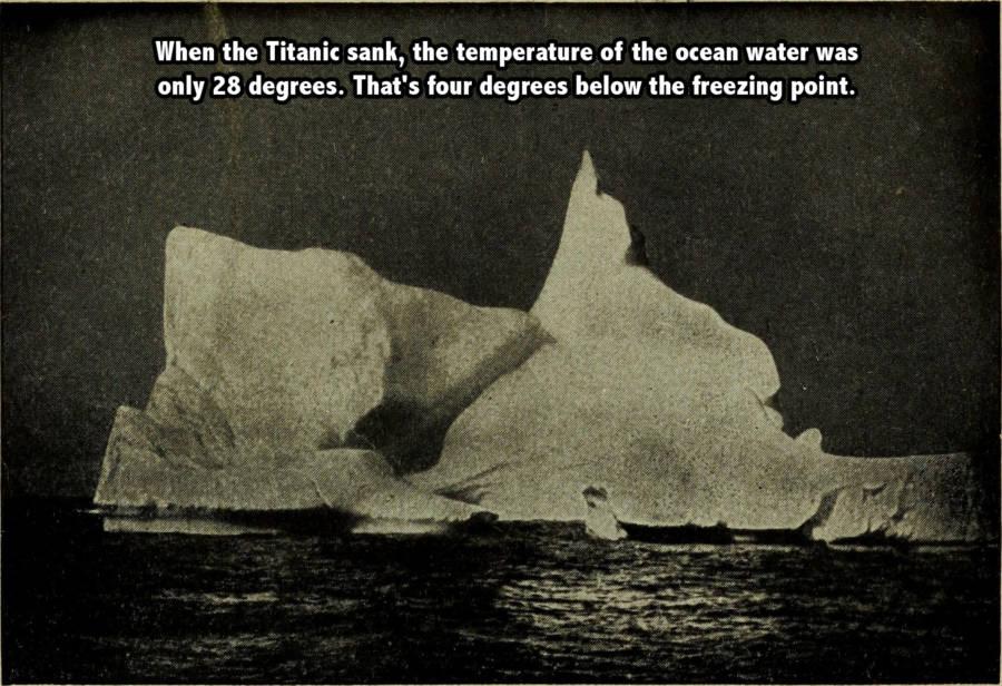 Iceberg Waters Boat