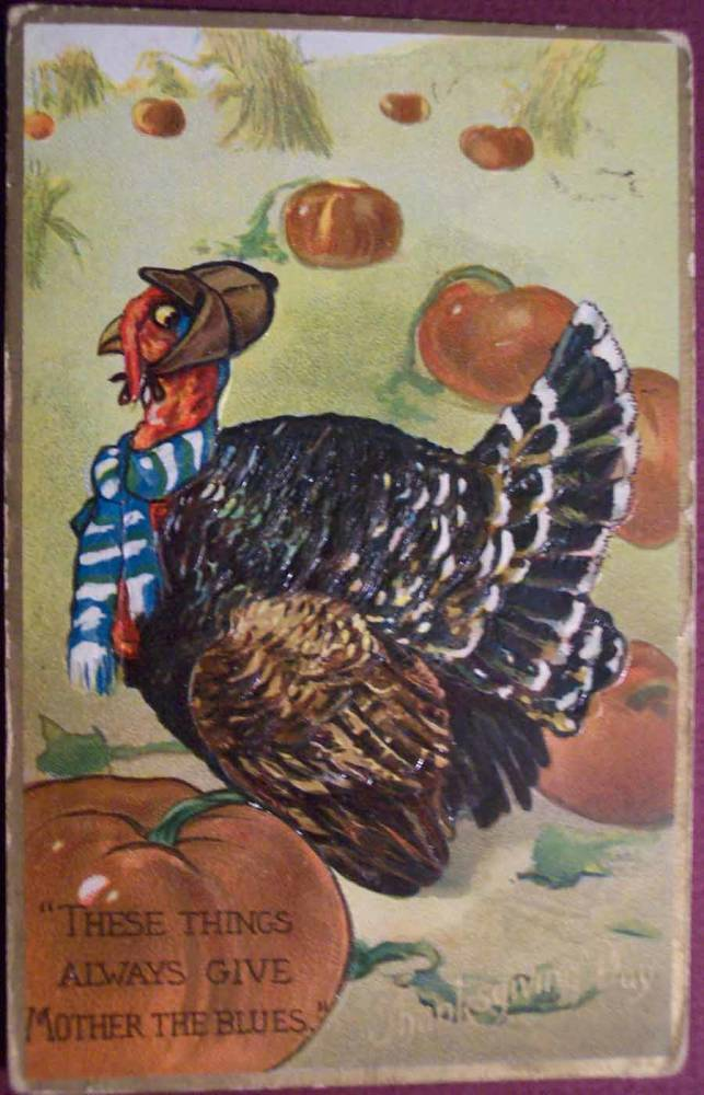 Weird Thanksgiving Photos Turkey Scarf