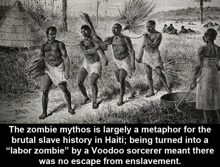 Facts About Zombies