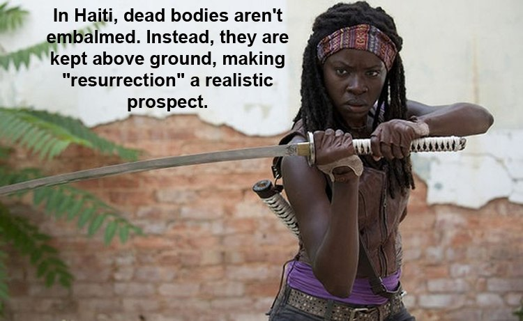 Cool Facts About Michonne