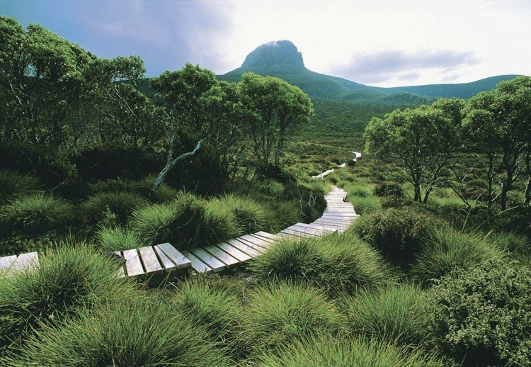 Best Hiking Trails Overland Track