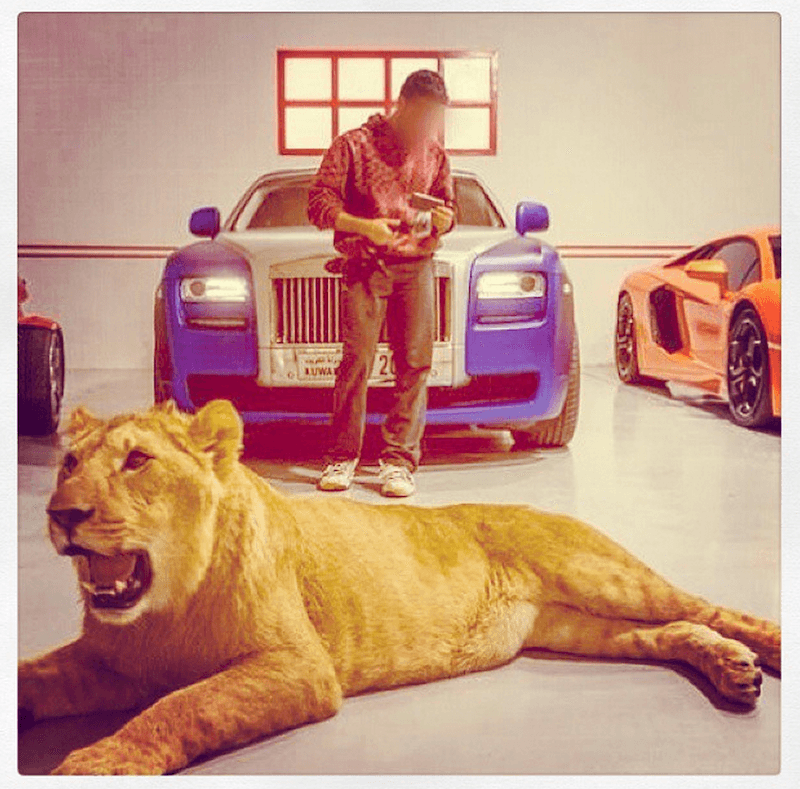 Narco Instagram Photos Lion