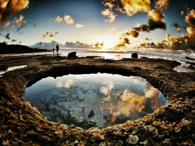 Best Gopro Photos Tide Pools Mexico