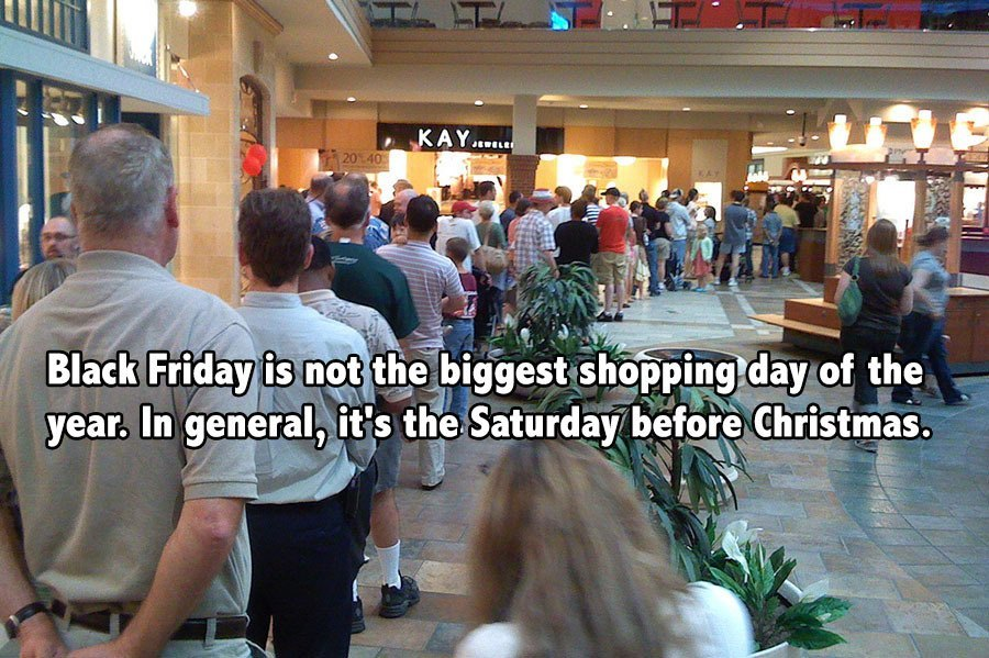 Black Friday Facts Long Line