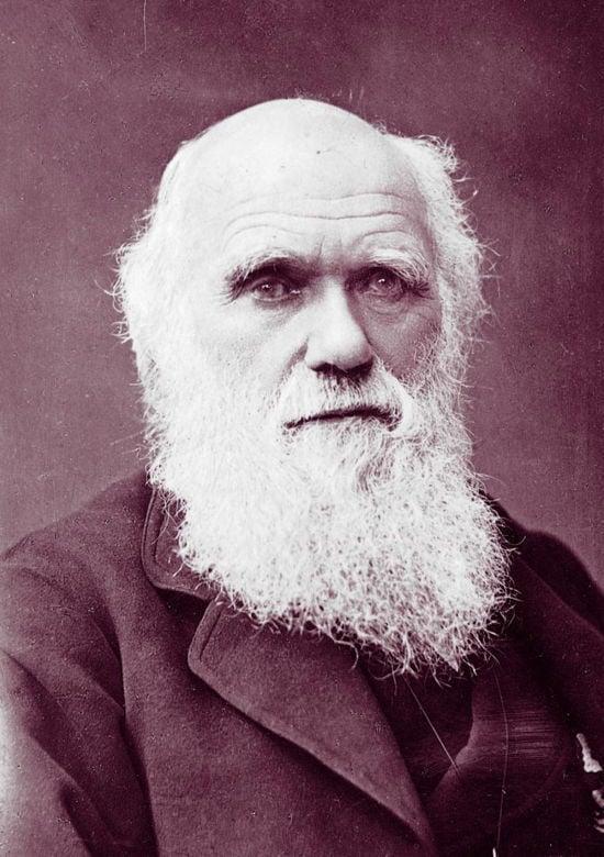 Charles Darwin Incest Stories