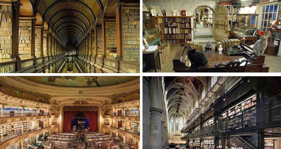 Coolest Bookstores El Ateneo