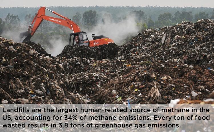 Food Waste Landfill