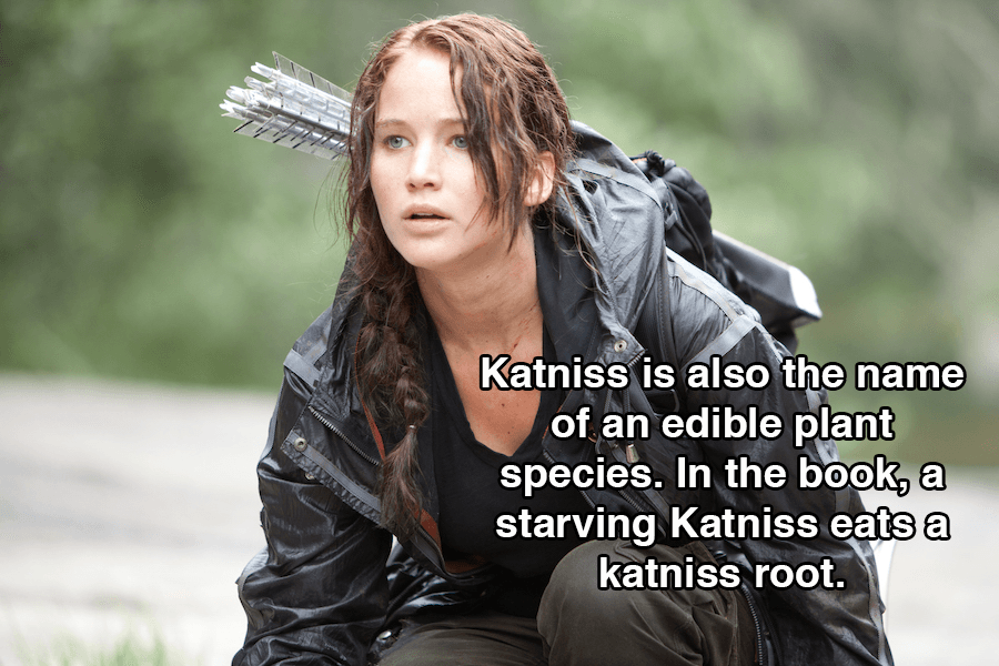 Hunger Games Facts Katniss Root
