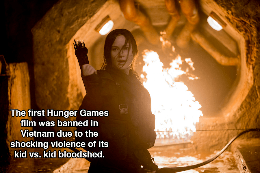Hunger Games Facts Violence