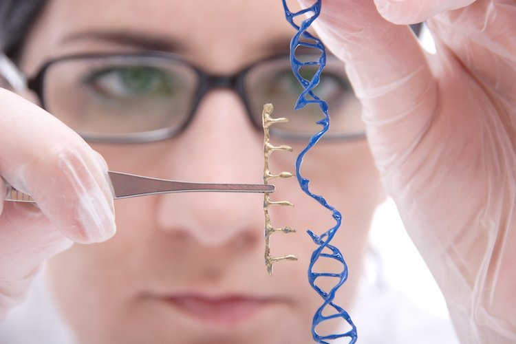 understanding biotechnology in human medicine A list of frequently asked questions about the completion of the human genome project newfound understanding of the human of medicine human.