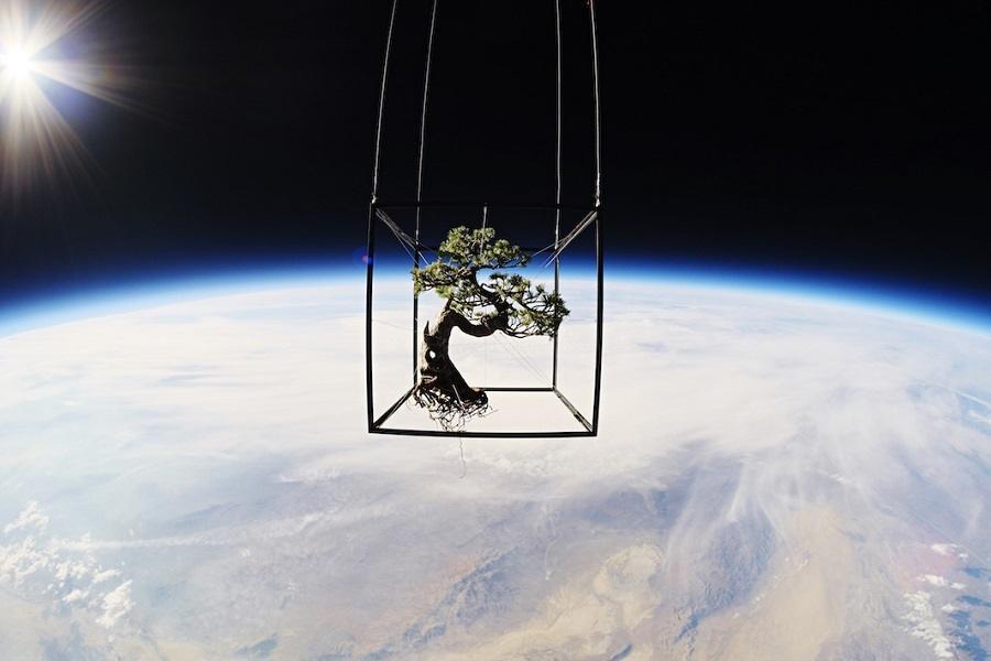 Shiki Space