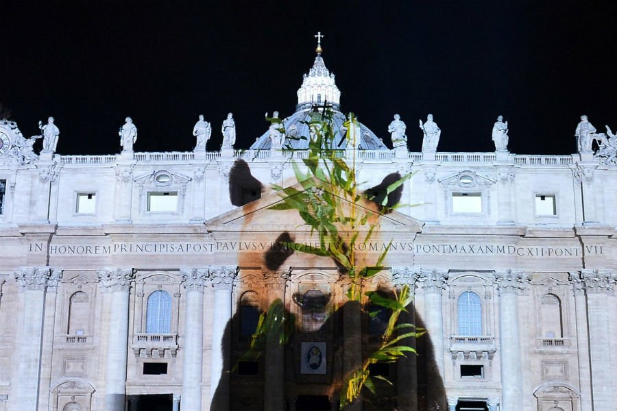 Vatican Art Projection 2