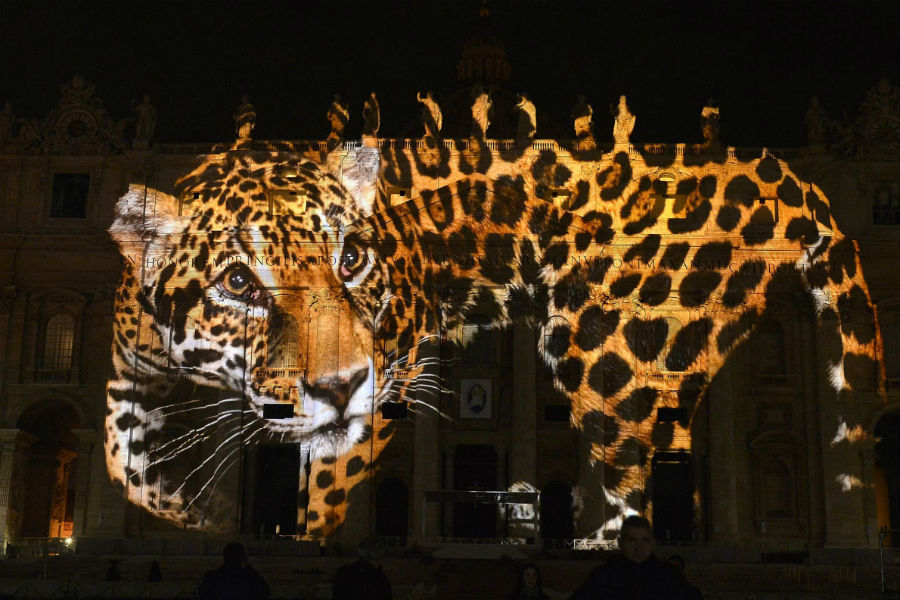 Vatican Art Projection