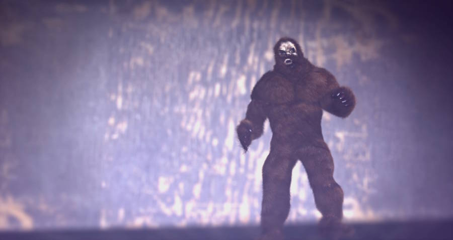 10 Bigfoot Facts That Will Definitely Keep You Out Of The