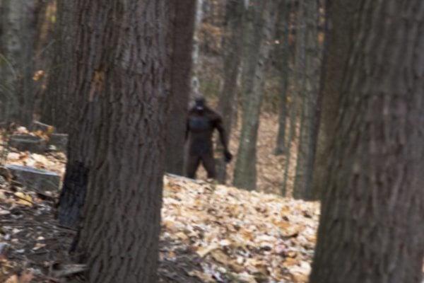 Bigfoot Hiding
