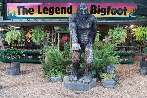 Bigfoot Store