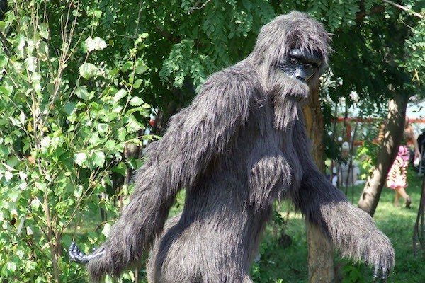 Bigfoot Stroll