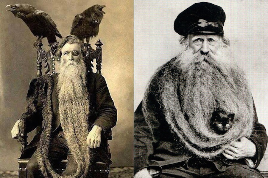 Giant Beards 1