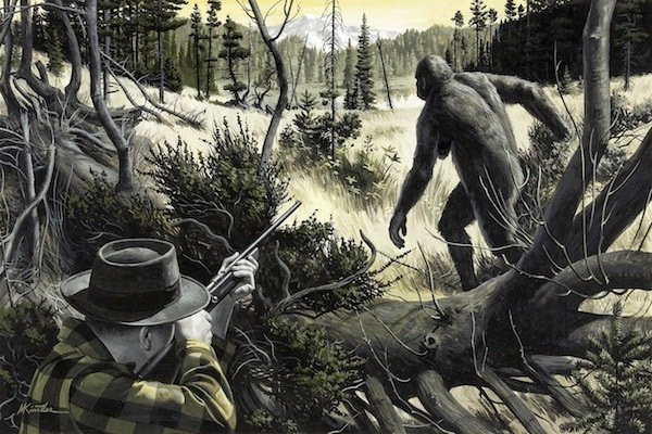 Hunting Bigfoot