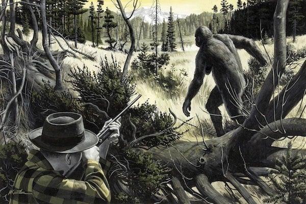 Hunting Bigfoot