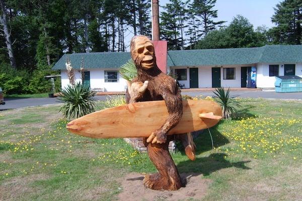 Surfing With Sasquatch