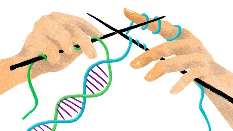 Genetically Modified Humans Dna
