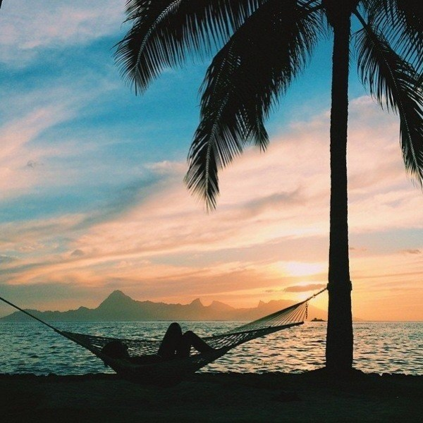 Hammock Sunset Tropical