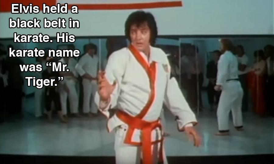 Elvis Presley Black Belt