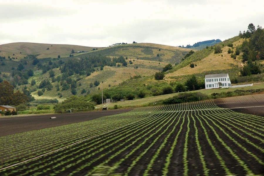 Organic Food Myths Farm