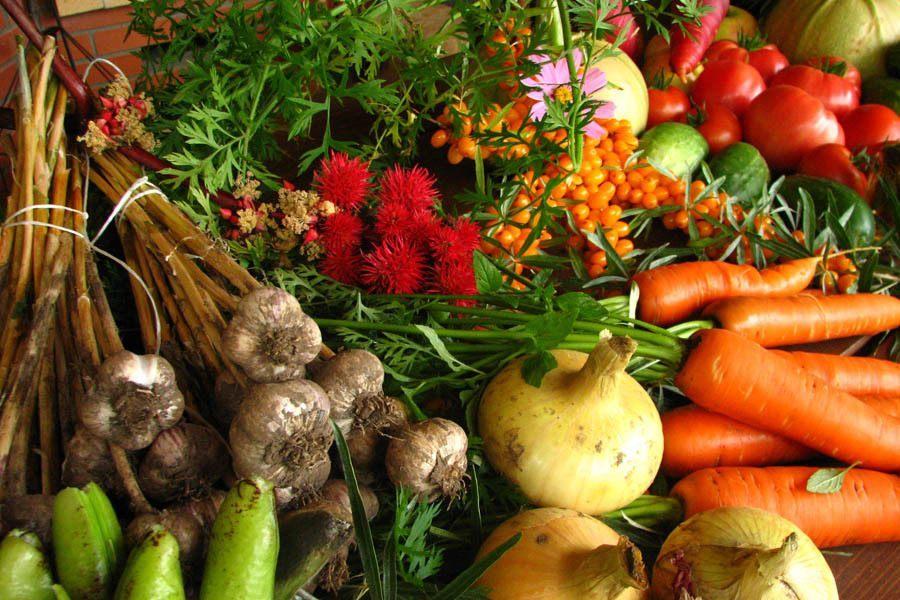 Organic Food Myths Produce