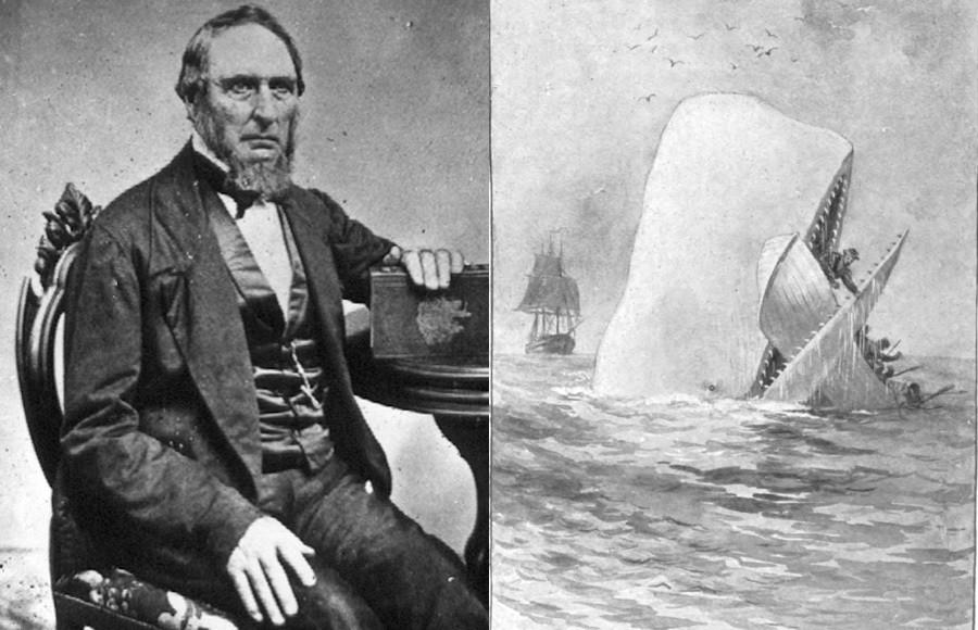 Owen Chase Whale Attack