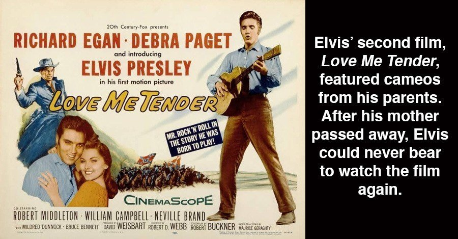 Strange Elvis Facts Poster