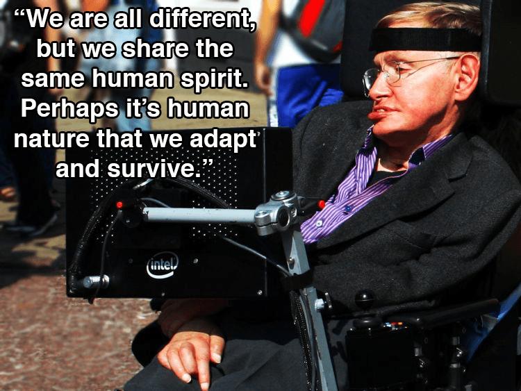 Hawking In Profile