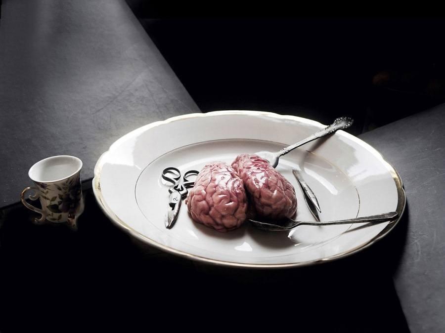 Brain Still Life
