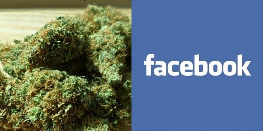 Marijuana Facebook