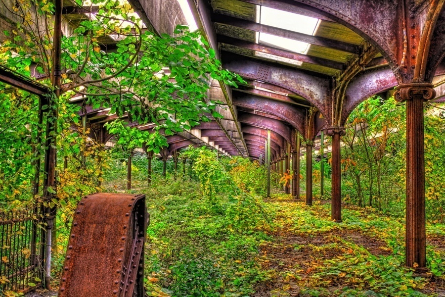 Places Reclaimed By Nature Central Railroad