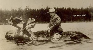 Photo Of The Day: The True Story Behind That Picture Of Teddy Roosevelt Riding A Moose