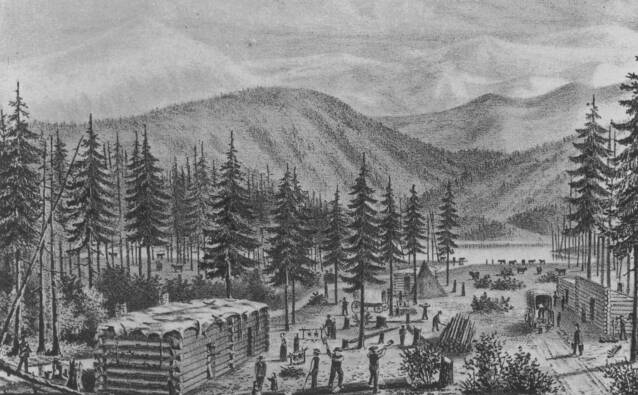 Truckee Lake Camp Illustration