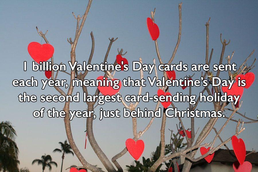 ... Valentine Day Facts 23 Fun Little Known Valentine U0027s Day Facts ...
