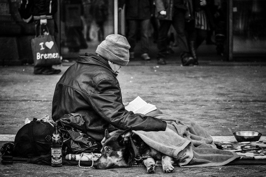 Best Street Photography Homeless Man Dog