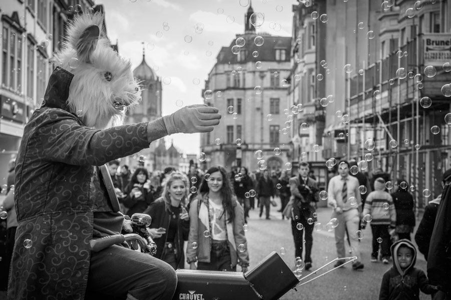 Best Street Photography White Rabbit
