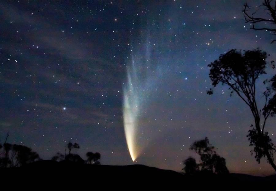 Comet Stars Trees