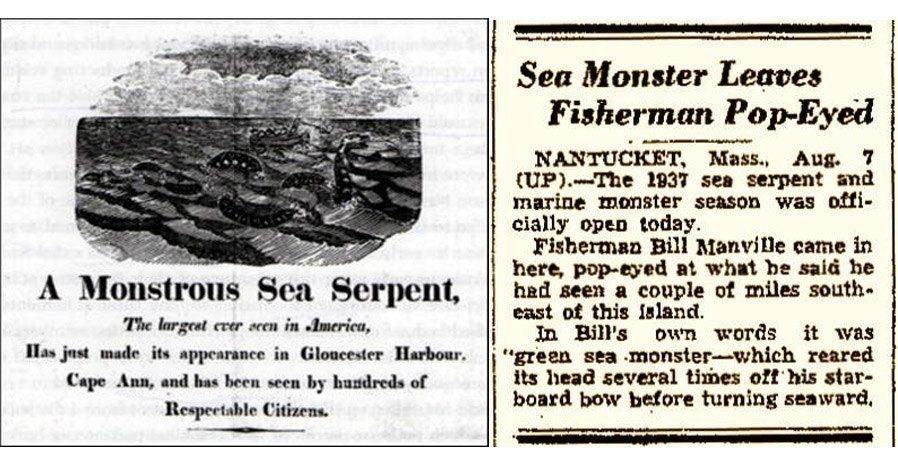 Newspaper Article On Sea Serpent