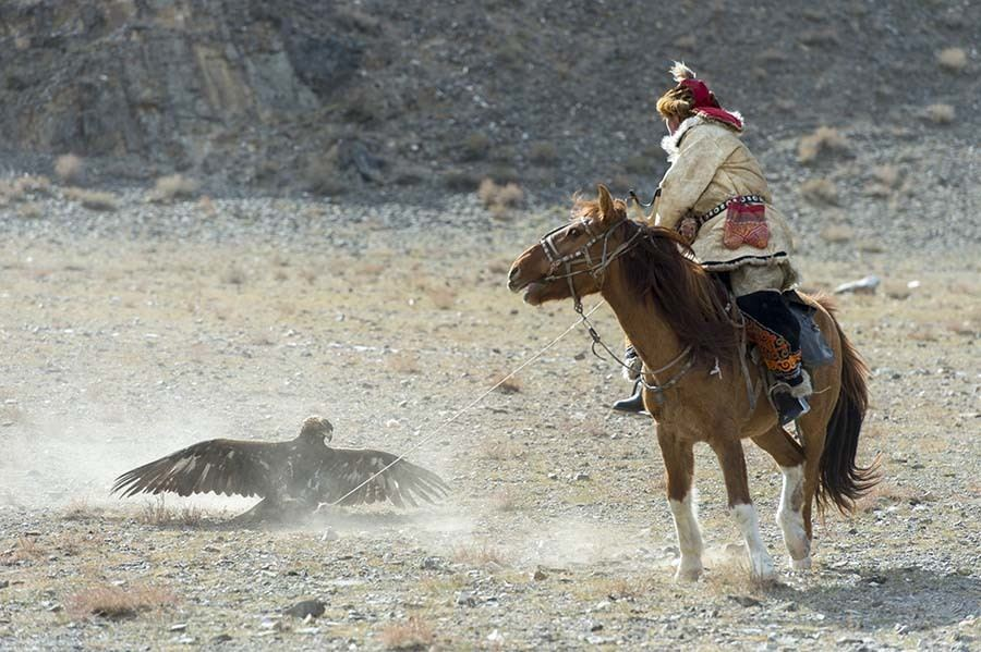 Mongolia Capture