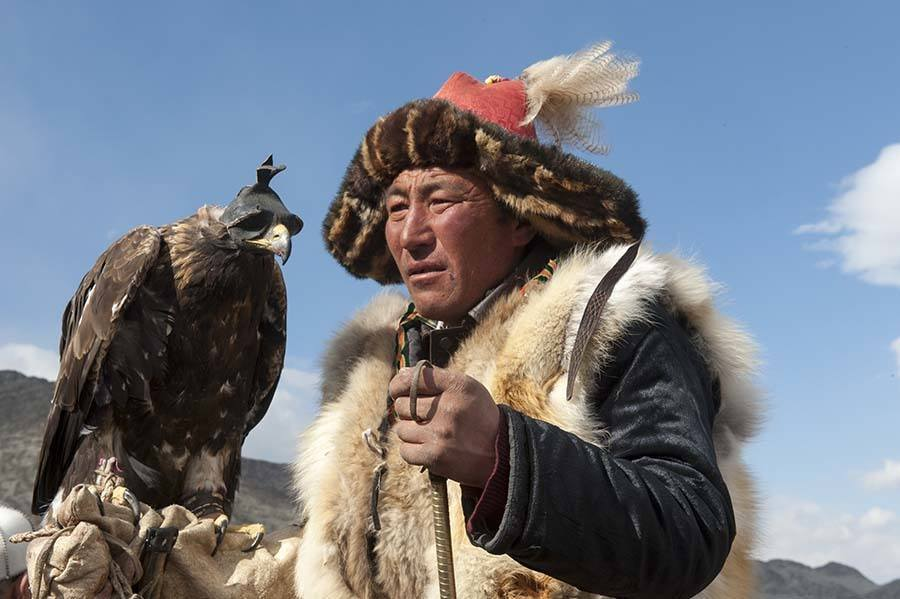 Mongolia Looking