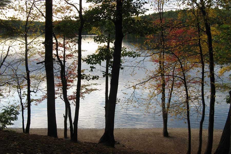 Walden October