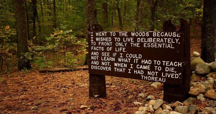 60 Henry David Thoreau Quotes That Will Change Your Worldview Amazing Henry David Thoreau Quotes