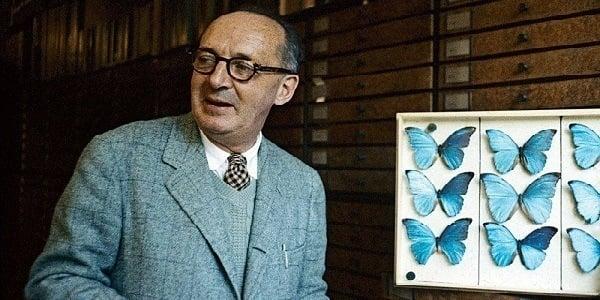 Writers Day Jobs Vladimir Nabokov