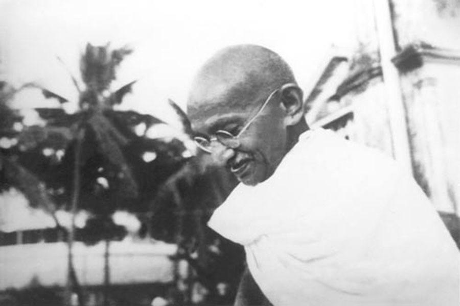 Gandhi Palmtrees