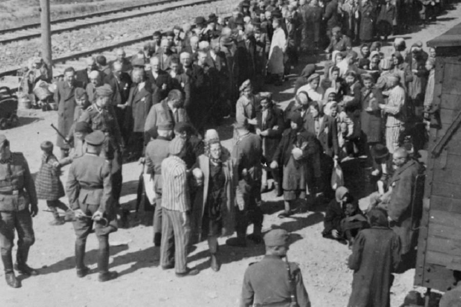 People Arrive At Auschwitz Camp